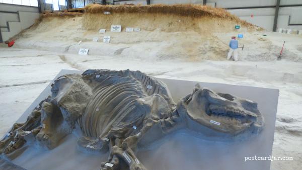 Nebraska's Nicest #5 – Ashfall Fossil Beds State Historical Park