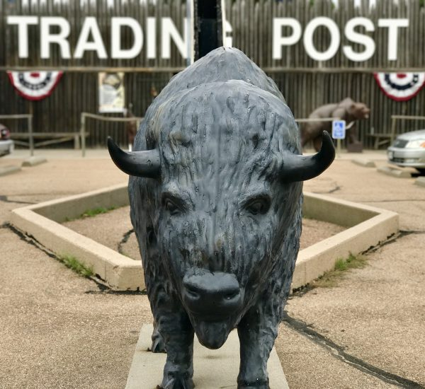 Bison statue in front of the Fort Cody Trading Post, North Platte, Nebraska