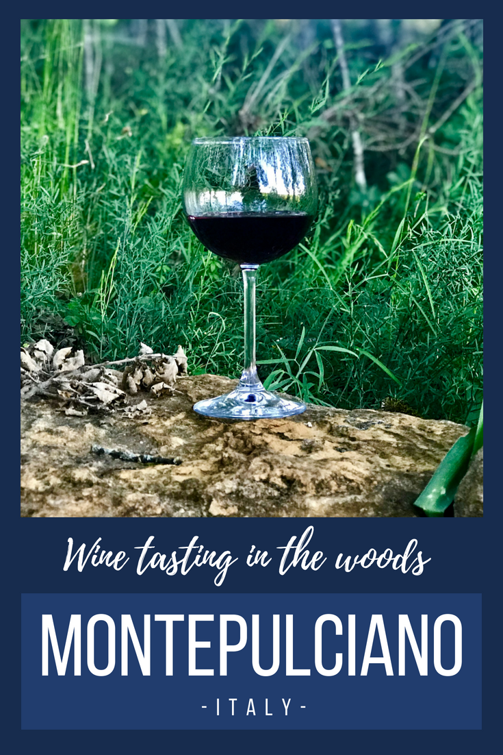 One of the most unique and memorable wine tastings we've ever had was in the woods at a vineyard near Montepulciano, Italy.
