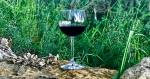 Podere Della Bruciata wine tasting, Montepulciano, Italy