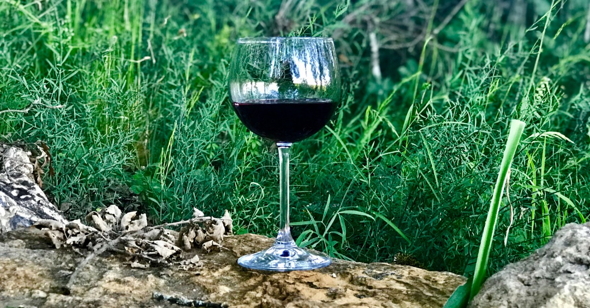 A unique wine tasting in the woods and our stay near Montepulciano, Italy