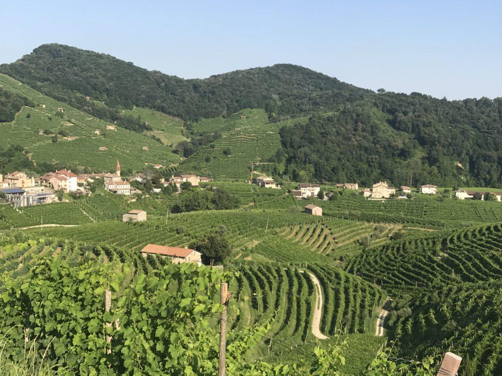 Italian Agritourismo businesses area everywhere in the Prosecco region near Valdobbiadene, Italy.