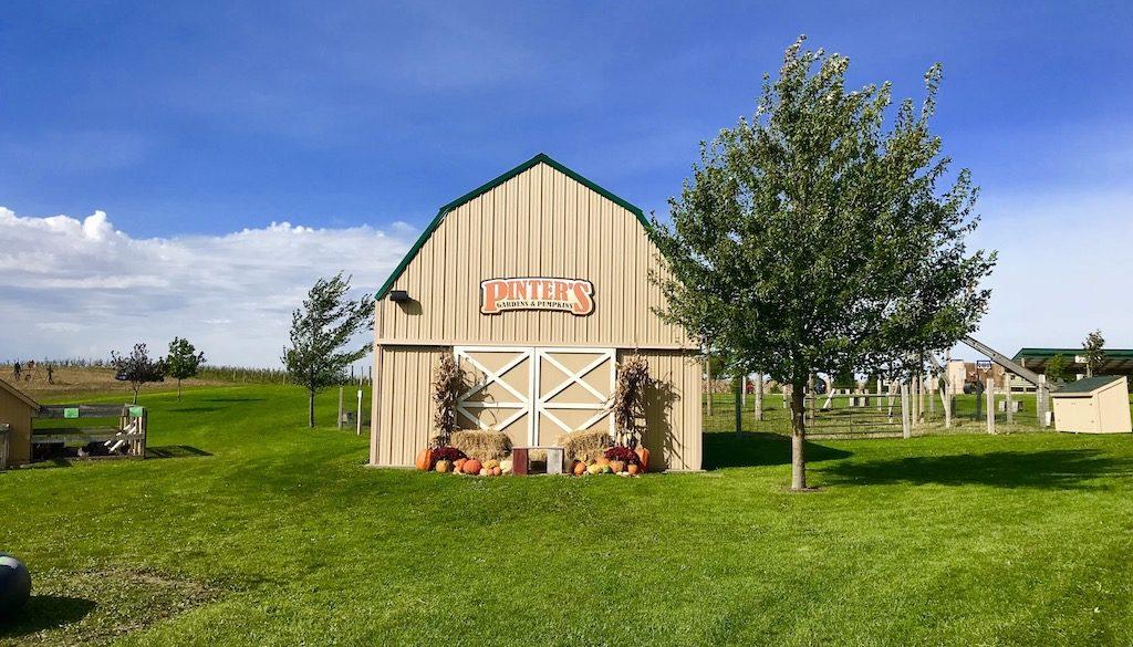 Barn at Pinter's Gardens and Pumpkins, Decorah, Iowa