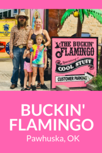A look inside Cody and Lauren Garnett's world famous Buckin' Flamingo in Pawhuska, Oklahoma.