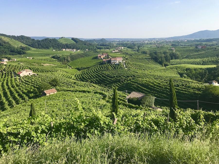 Cartizze Hill near Valdobbiadene beautiful view