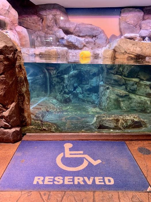 handicap accessible georgia aquarium