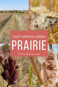 visit spring creek prairie
