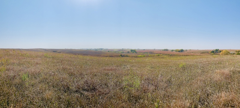 Spring Creek Prairie Denton Neb.